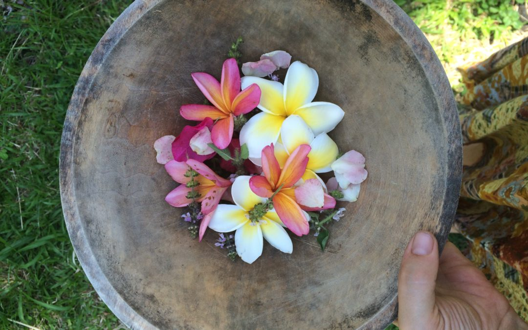 Pathways to Healing: Trauma, Brain Functioning and Plumeria Plant Spirit Medicine