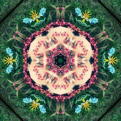 Inner Vision Flower Essence Blend
